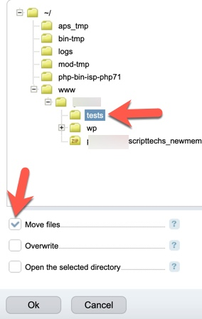 Move files ISPmanager